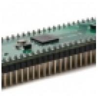 Микросхема V2DIP1-64
