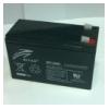 Аккумулятор RT1280E