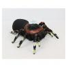 Животные паук резиновый
